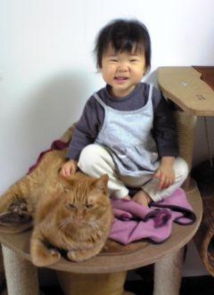 猫と赤ちゃんの写真3