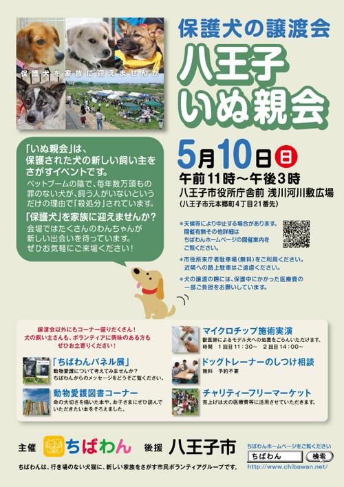 hachiohji13_poster