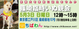 event-150503-shinozakirinji_banner_01