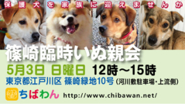 event-150503-shinozakirinji_banner_02