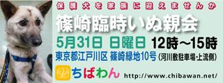 event-150531-shinozakirinji_banner_01