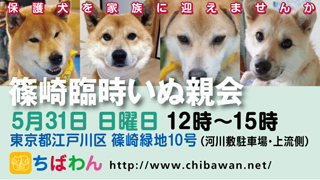 event-150531-shinozakirinji_banner_02