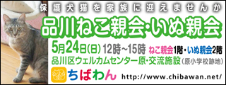 shinagawa54_320x120