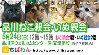 shinagawa54_320x180