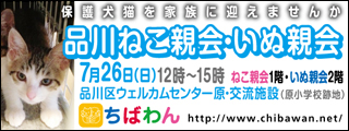 shinagawa56_320x120