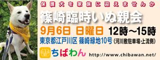 event-150906-shinozakirinji_banner_01