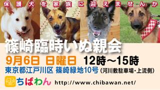 event-150906-shinozakirinji_banner_02