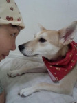 taiken_dog_umeko_1