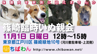 event-151101-shinozakirinji_banner_02