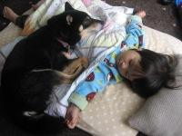 taiken_dog_konoha_01