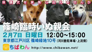 event-160207-shinozakirinji_banner_02
