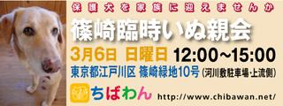 event-160306-shinozakirinji_banner_01