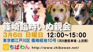 event-160306-shinozakirinji_banner_02