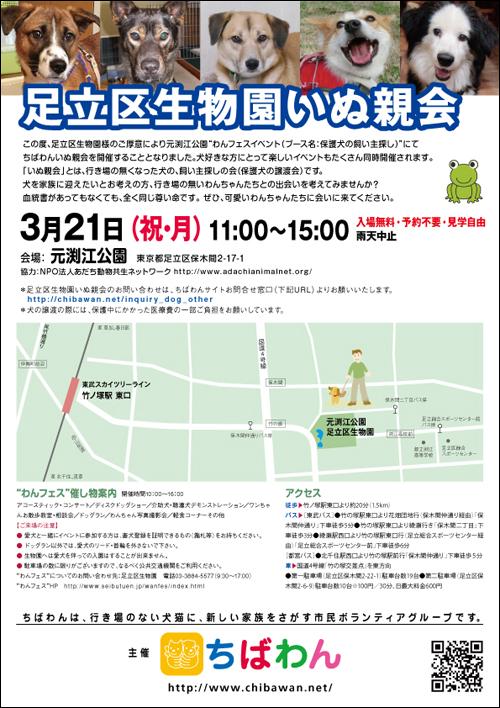 adachi01_poster