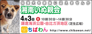 syonan33_320x120