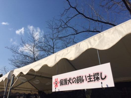 event-160321-adachi_1