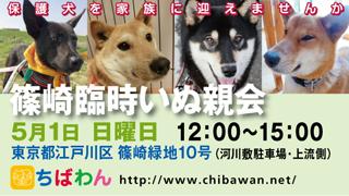 event-160501-shinozakirinji_banner_02