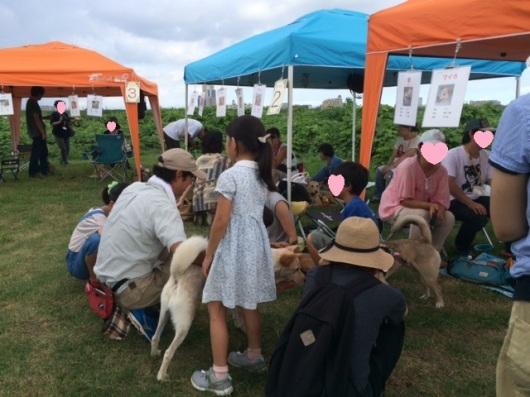 event_160904-shinozakirinji_kaijyou01