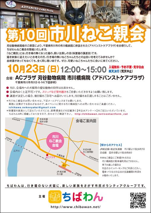 ichikawa10_poster