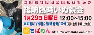 event-170129-shinozakirinji_banner_01