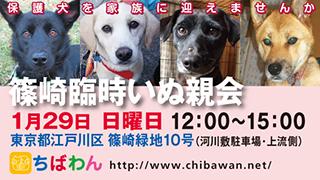 event-170129-shinozakirinji_banner_02