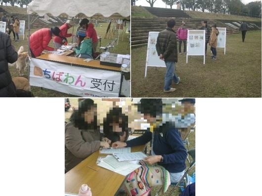 report-161127-hachioji04