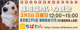 event-170305shinozakirinji_banner_01
