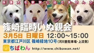 event-170305shinozakirinji_banner_02