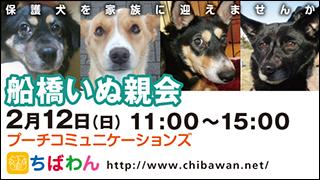 funabashi21_320x180