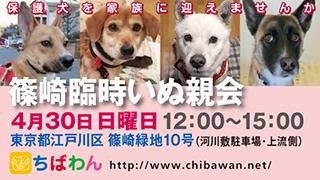 event-170430shinozakirinji_banner_02