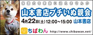 yamamoto01_320x120