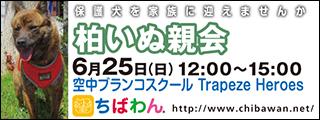 kashiwa01_320x120