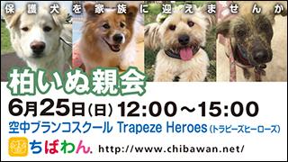 kashiwa01_320x180