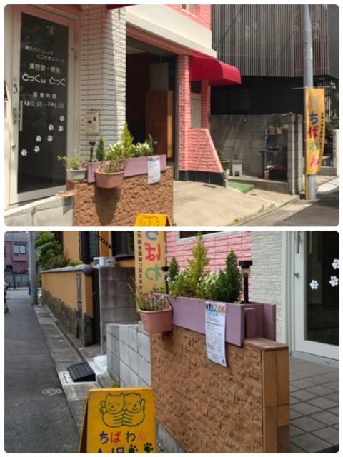 event-170528-katsushika_入口2