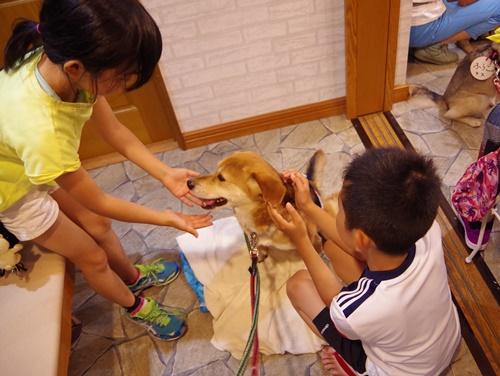 event-170528-katsushika_子供たちと触れ合い