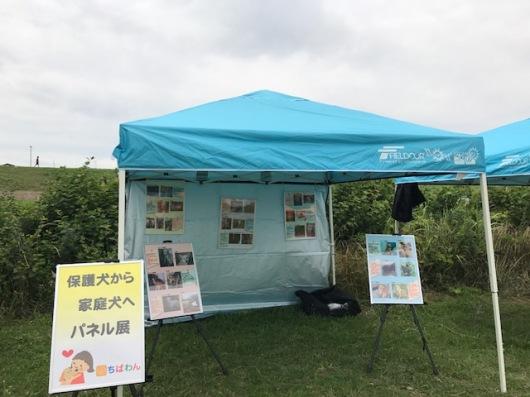 event-170702-shinozakirinji_パネル展