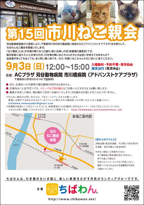 ichikawa15_poster