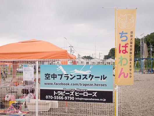 kashiwa_000
