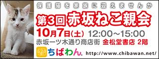 akasaka03_320x120