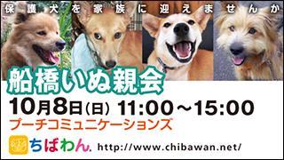 funabashi28_320x180