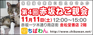 akasaka04_320x120