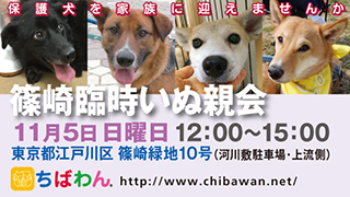 event-171105shinozakirinji_banner_02