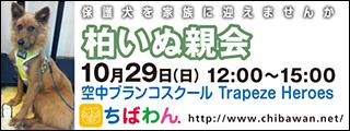 kashiwa02_320x120