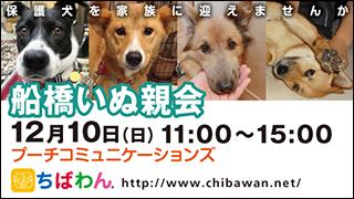 funabashi29_320x180