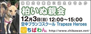 kashiwa03_320x120