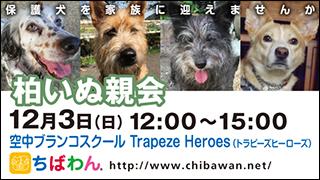 kashiwa03_320x180
