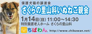 20180114sakura_320x120