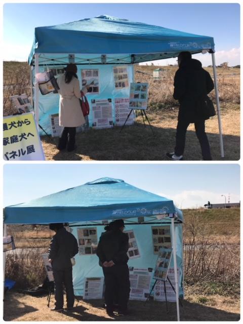 event-180204-shinozakirinji_パネル展