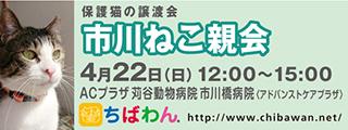 20180422ichikawa_320x120