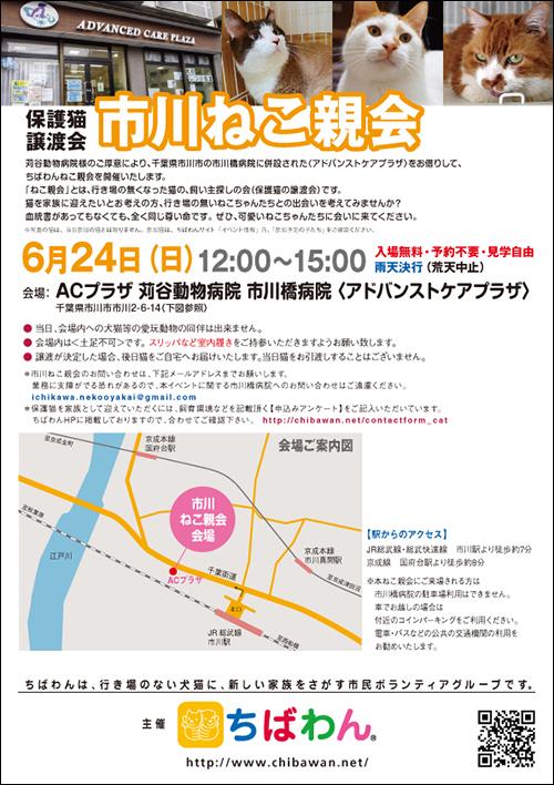 ichikawa20_poster